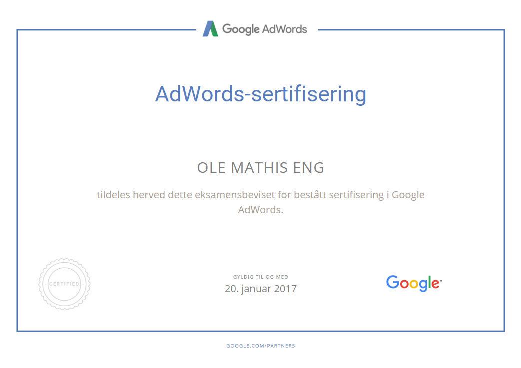 Google AdWords Sertifisering Ole Mathis Eng